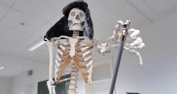 Skelett aus dem Biologieunterricht mit Fellmütze
